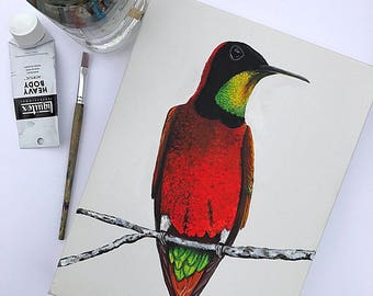 Original Crimson Topaz Hummingbird Painting