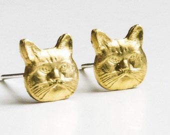 Cats ear studs