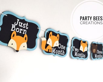 Months watch me grow monthly photo banner for first birthday woodland forest friends fox bear and raccoon