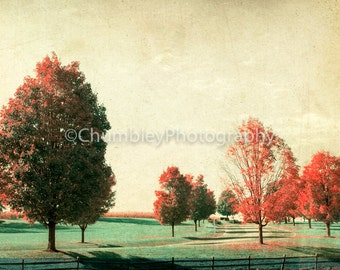 Sunday Drive Landscape Photographic Print with Vintage Look/Autumn/Rustic Country Road