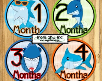 Shark Baby Boy Monthly Stickers Baby Shark Month Stickers Baby Boy Shower gift 1- 12 Months infant month stickers Milestone decals Nautical