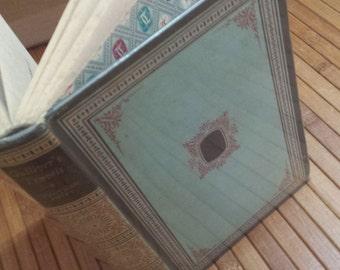 Gulliver's Travels Jonathan Swift Illustrated vintage hardback book ornate cover design