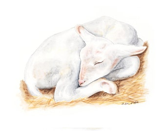 Lamb Nursery Art, Farm Animal Print, Baby Sheep, Farm Nursery, Lamb Art Print, Nursery Print, Animal Nursery, Baby Lamb Art
