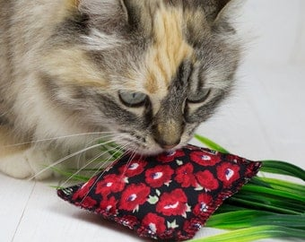 EcoKitty Limited Edition Handcrafted Organic Catnip Poppy Parcel Toy for Cats