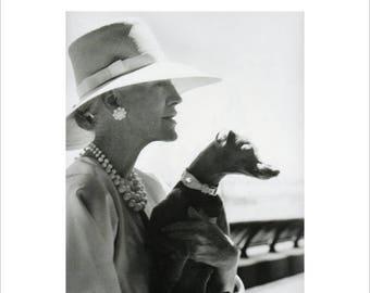 50% Off Estate Sale Vintage Vogue Dog Poster Print, Canine Couture, 1970s Italian Greyhound, Dog Art, 11 x 14  Mat