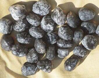 Xtra LG APACHE TEARS 3/4 lb. Obsidian Nodules Arizona Raw Rough Stones Tumbling Crafts Jewelry Making Lapidary Rough