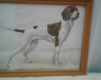 Vintage Hunting Dog/Pointer Drawing