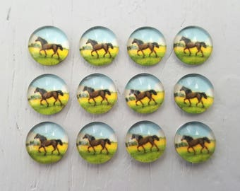 12 HORSE Glass Cabochons 10mm round