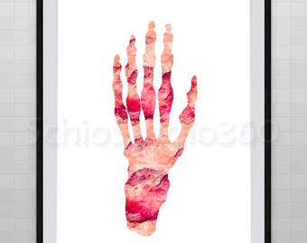 Hand Anatomy Watercolor Art Print  - Hand   Anatomy Poster - Bones Watercolor Wall Decor - Medical Art Poster
