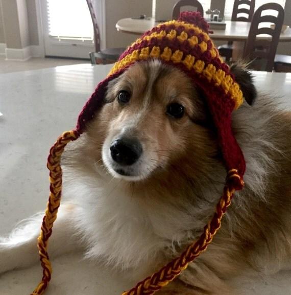 Harry Potter sombrero de perro, perro de Gryffindor, Harry Potter, sombrero, perro de Ravenclaw, Slytherin perro del perro, perro de Hufflepuff, Harry Potter perro, perro de Hogwarts