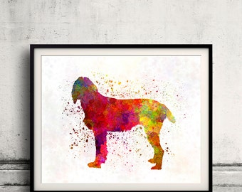 Pudelpointer 01 in watercolor - Fine Art Print Poster Decor Home Watercolor Illustration Dog - SKU 2307