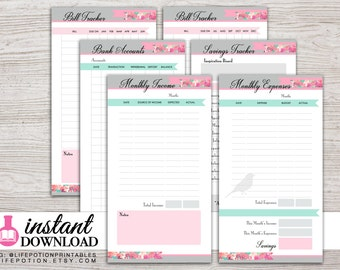 Planner Printable - Finance Inserts - Income - Expense Tracker - Filofax Personal - Kikki K Medium - 3.75 x 6.75 in - Design: Flirty Girl