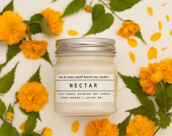 Nectar Soy Candle - Agave Cactus Succulent Soy Candle