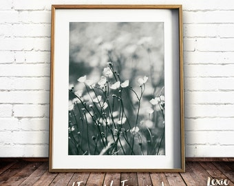 Flower Print, Botanical Print, Meadow Print, Flower Meadow, Black and White photo, Black and White flowers, Instant Download, Large Print