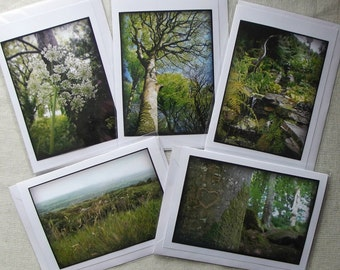 Photographic Art Cards - CORNWALL (5 Nature themed cards)