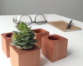 Mini Wood Succulent Planter