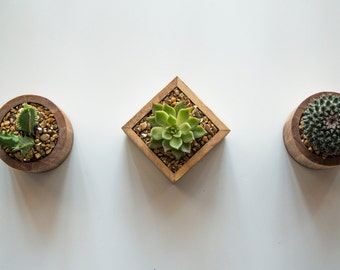 3 Handcrafted Succulent Wooden Pieces