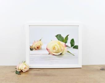 Peach Rose Photography Print / Photo / Wall Art / Home Decor / Printables / Printable Wall Art / You Print / Minimalist Digital Art