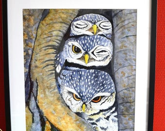 Glicée/ Fine Art print of watercolor painting: Three little owls, owl print
