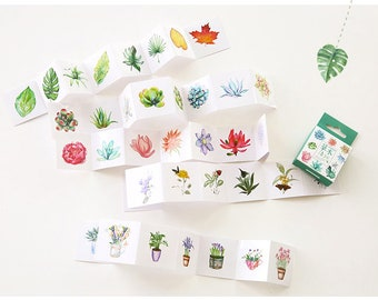 Mini Kawaii Deco Sticker Box Set | Green Plants | Cats