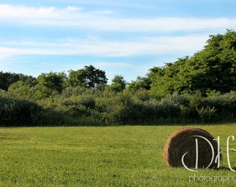 Indiana Summers - Country - Hay - Blue Skies - Nature Photography - Trees