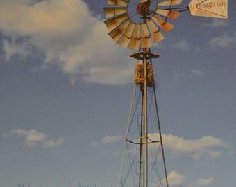 Birdnest Windmill