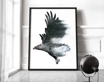 Freedom - Golden eagle