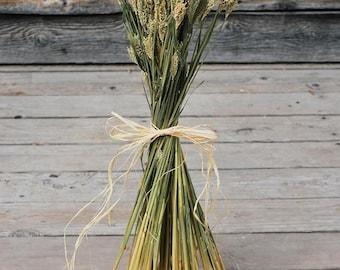 Hooked Barley | Hoody Barley | Dried Barley | 8 oz Barley | Dreid Plants