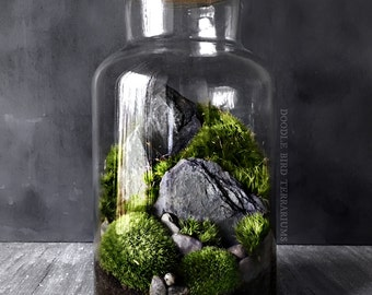 Woodland Moss and Fern Terrarium in Large Glass Jar