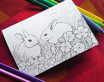 Nature in Spring Colouring Cards Pack - bunnies, butterflies, birds, frogs & flowers! Kids activity - adult coloring card set. Easter.