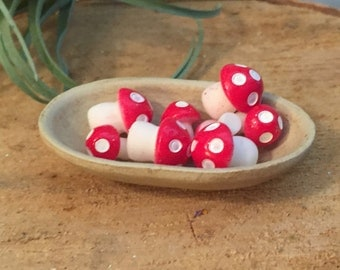 Mini Mushrooms, Toadstools, Fairy Garden Accessory, Miniature Home and Garden Decor, Crafting, Packaged Set of Red and White Mushrooms