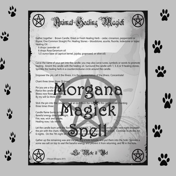 ANIMAL HEALING MAGICK, Digital Download,  Book of Shadows  Grimoire, Scrapbook, Spells, Wicca, Witchcraft, Pagan, White Magick,