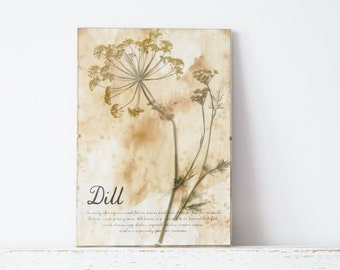 Pressed Herbs- Dills in Frame (4)
