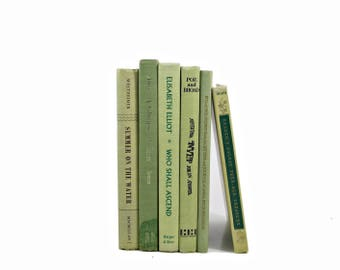 Green Pistachio Decorative Books, Antique Book Set, Old Book Collection, Book Decoration Book shelf Decor, Instant Library, Book Stack