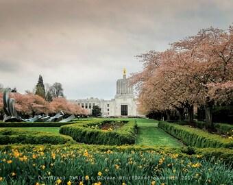 Oregon Photography | Salem Oregon | State Capitol Building | Architecture Photo | Springtime Cherry Blossoms | Oregon State Capitol 2