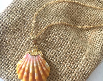 18kt Gold dipped Sunrise Shell necklace