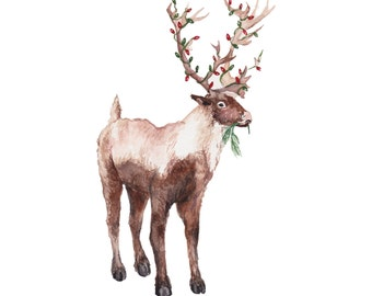 Reindeer pack of 5 holiday cards.