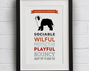 Old English Sheepdog Breed Traits Print