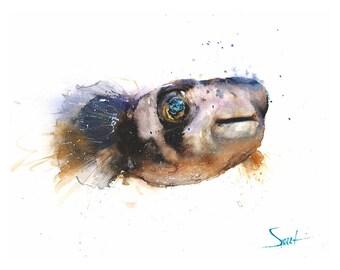 PUFFER PRINT - dogface puffer fish watercolor, puffer watercolor, puffer painting, fish print, fish wall art, fish lover gift, fish artwork