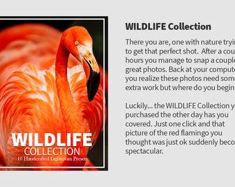 10 Wildlife Lightroom Presets