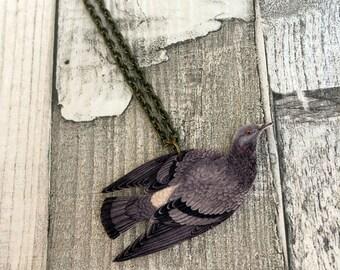 Rock Dove Necklace, Pigeon Necklace, Bird Jewellery, Bird Jewelry, Garden Bird, Bird Lover Gift, British Bird