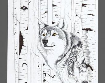 1996 Joe Medrano Wolf Poster Black & White Print Original Vintage Poster 8.5 x 11 Medium Size