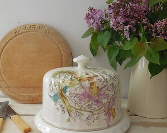 Lovely antique Royal Bonn china cheese dome, cloche
