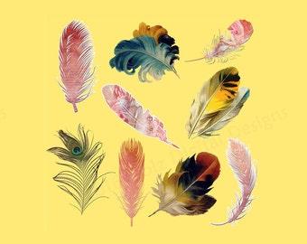 Clipart Feathers, Feather Clipart, Clip Art Feather, Clipart Feather, Feather PNG, PNG Feather, Feathers PNG, Clip Art Feathers