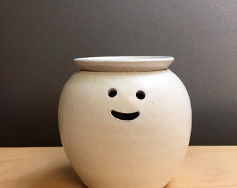 Hairy Babes Plant Pot Mini: SEAN