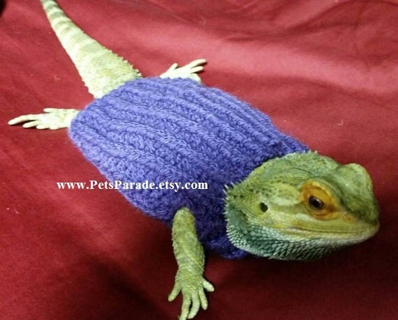 Knitting Pattern For Hamster Jumper : Bearded Dragon Sweaters Hamster Clothes Hamster Sweater