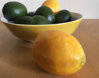 Vintage Old Florida realistic / life size plastic citrus fruit - 6 juicy limes & 2 sweet lemons for centerpiece or photo shoot!