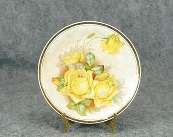 Harker Pottery Company Vintage Porcelain Decorative Plate c. 1890s