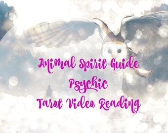 Animal Spirit Guide Psychic Tarot Video Tarot Reading
