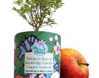 Teacher's Tree of Knowledge Garden Kit